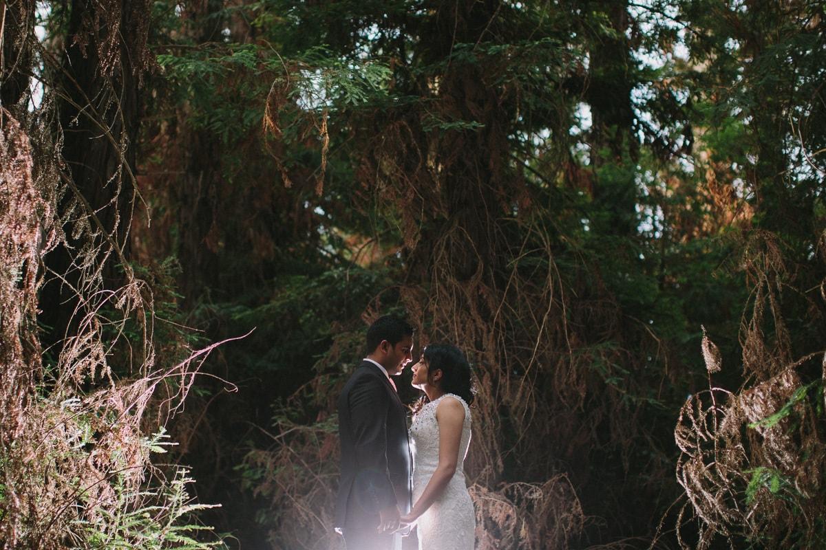Priyanka&KrishanBlog-042